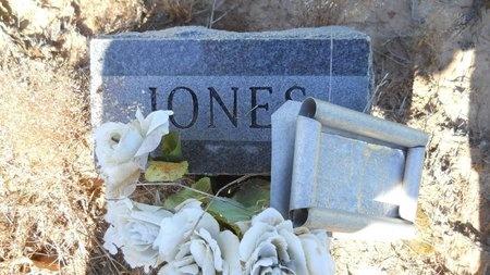 JONES, JANE - Bossier County, Louisiana | JANE JONES - Louisiana Gravestone Photos