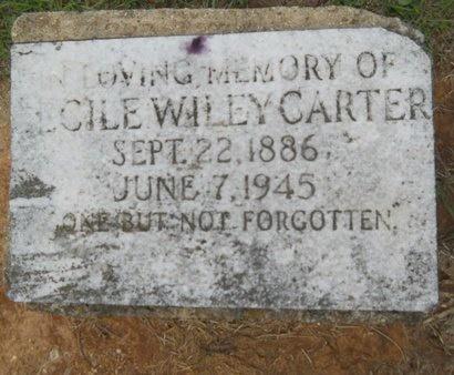 CARTER, CECILE - Caddo County, Louisiana | CECILE CARTER - Louisiana Gravestone Photos
