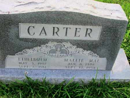 CARTER, ETHELDRED - Caddo County, Louisiana | ETHELDRED CARTER - Louisiana Gravestone Photos