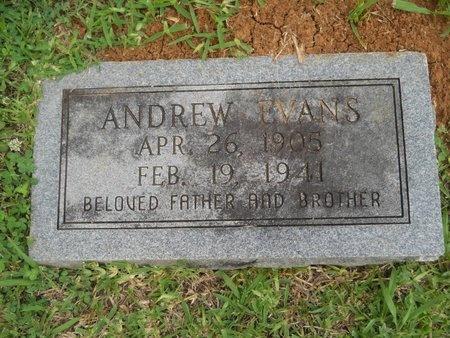 EVANS, ANDREW - Caddo County, Louisiana | ANDREW EVANS - Louisiana Gravestone Photos