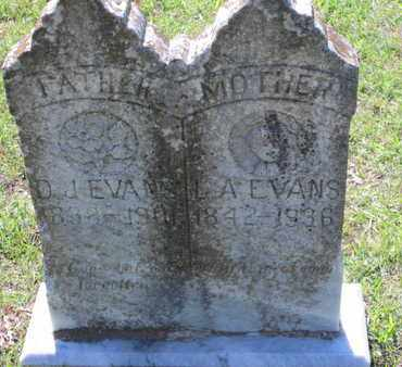 EVANS, LUCINDA ANN - Caddo County, Louisiana | LUCINDA ANN EVANS - Louisiana Gravestone Photos