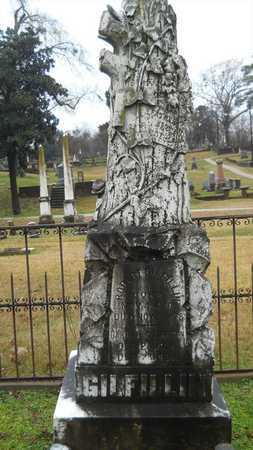 ANDERSON, BARBARA GILFILLIN - Caddo County, Louisiana | BARBARA GILFILLIN ANDERSON - Louisiana Gravestone Photos