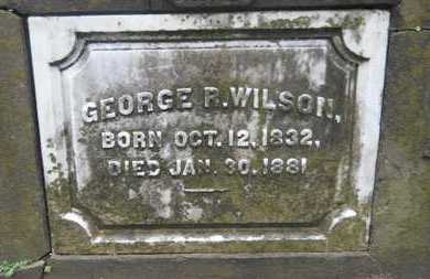 WILSON, GEORGE REED, SR - Caddo County, Louisiana | GEORGE REED, SR WILSON - Louisiana Gravestone Photos