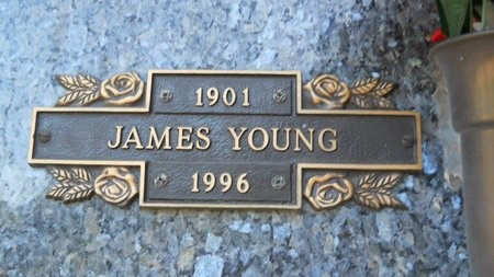 YOUNG, JAMES - Caddo County, Louisiana | JAMES YOUNG - Louisiana Gravestone Photos