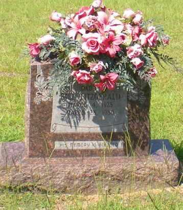 FITZGERALD, BILL - Caldwell County, Louisiana | BILL FITZGERALD - Louisiana Gravestone Photos