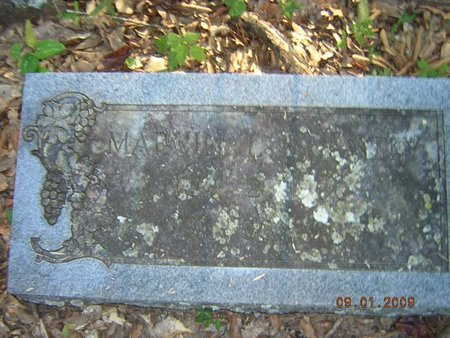 BRANTLY, MARVIN LARKIN - Claiborne County, Louisiana | MARVIN LARKIN BRANTLY - Louisiana Gravestone Photos