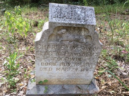 GOODWIN, CHARLEY MARVIN - Claiborne County, Louisiana | CHARLEY MARVIN GOODWIN - Louisiana Gravestone Photos