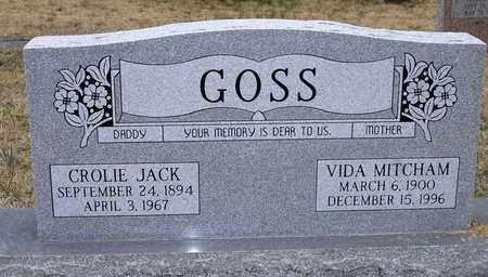 GOSS, VIDA - Claiborne County, Louisiana | VIDA GOSS - Louisiana Gravestone Photos