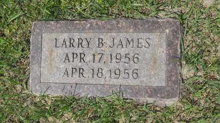 JAMES, LARRY B - Claiborne County, Louisiana | LARRY B JAMES - Louisiana Gravestone Photos