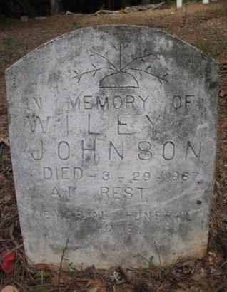JOHNSON, WILEY - Claiborne County, Louisiana | WILEY JOHNSON - Louisiana Gravestone Photos