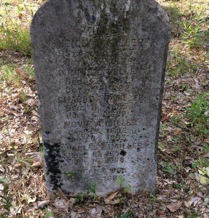 MILLER, HENRY C - Claiborne County, Louisiana | HENRY C MILLER - Louisiana Gravestone Photos