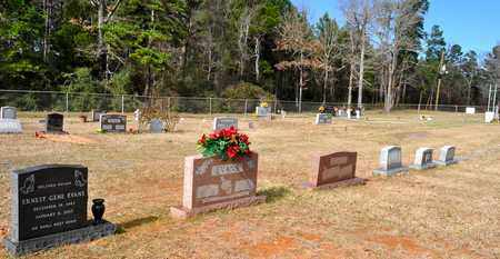 * OVERVIEW 2, . - De Soto County, Louisiana | . * OVERVIEW 2 - Louisiana Gravestone Photos