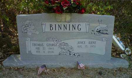 BINNING, THOMAS GEORGE - De Soto County, Louisiana   THOMAS GEORGE BINNING - Louisiana Gravestone Photos