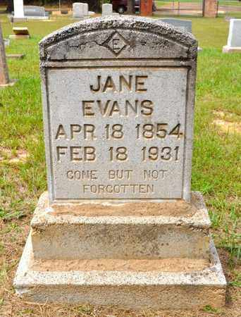 EVANS, ANNA JANE - De Soto County, Louisiana | ANNA JANE EVANS - Louisiana Gravestone Photos