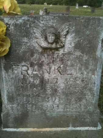 FRANKLIN, JAMES - De Soto County, Louisiana | JAMES FRANKLIN - Louisiana Gravestone Photos