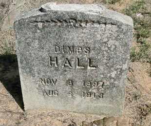 HALL, DIMPS - De Soto County, Louisiana | DIMPS HALL - Louisiana Gravestone Photos