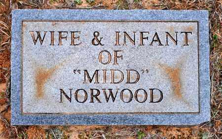 NORWOOD, INFANT - De Soto County, Louisiana | INFANT NORWOOD - Louisiana Gravestone Photos