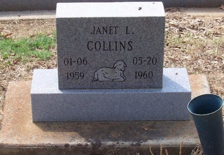 COLLINS, JANET L - East Baton Rouge County, Louisiana | JANET L COLLINS - Louisiana Gravestone Photos
