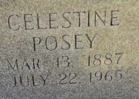 POSEY NORWOOD, CELESTINE  (CLOSEUP) - East Baton Rouge County, Louisiana   CELESTINE  (CLOSEUP) POSEY NORWOOD - Louisiana Gravestone Photos