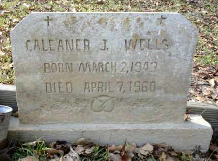 WELLS, CALEANER J - East Baton Rouge County, Louisiana | CALEANER J WELLS - Louisiana Gravestone Photos