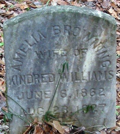WILLIAMS, AMEILA - East Baton Rouge County, Louisiana   AMEILA WILLIAMS - Louisiana Gravestone Photos