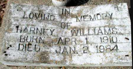 WILLIAMS, HARNEY - East Baton Rouge County, Louisiana | HARNEY WILLIAMS - Louisiana Gravestone Photos