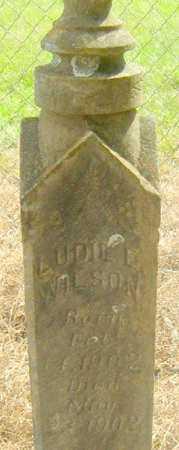 WILSON, LUDIE L - East Baton Rouge County, Louisiana | LUDIE L WILSON - Louisiana Gravestone Photos