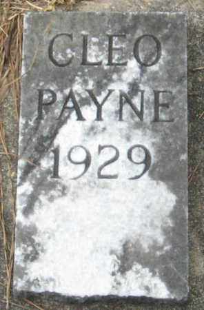 PAYNE, CLEO - East Feliciana County, Louisiana | CLEO PAYNE - Louisiana Gravestone Photos