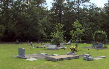 * OVERVIEW,  - Evangeline County, Louisiana    * OVERVIEW - Louisiana Gravestone Photos