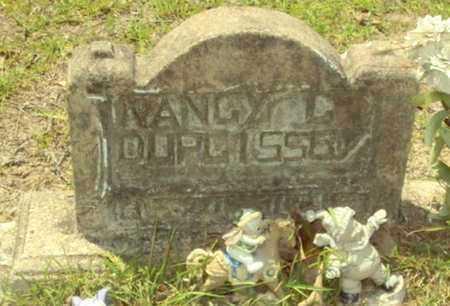DUPLISSEY, NANCY C - Evangeline County, Louisiana | NANCY C DUPLISSEY - Louisiana Gravestone Photos