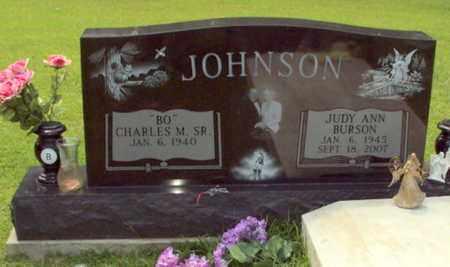 JOHNSON, JUDY ANN - Evangeline County, Louisiana | JUDY ANN JOHNSON - Louisiana Gravestone Photos