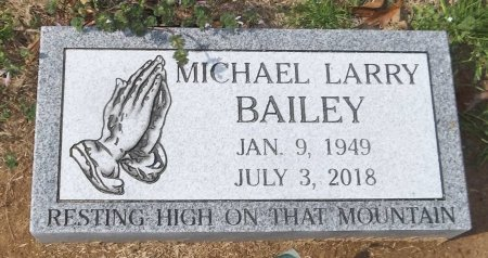 BAILEY, MICHAEL LARRY - Franklin County, Louisiana | MICHAEL LARRY BAILEY - Louisiana Gravestone Photos