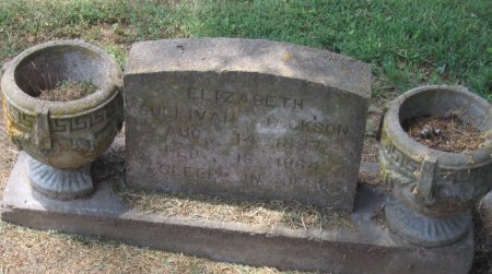 JACKSON, ELIZABETH - Franklin County, Louisiana | ELIZABETH JACKSON - Louisiana Gravestone Photos