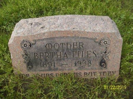 LILES, BERTHA - Franklin County, Louisiana | BERTHA LILES - Louisiana Gravestone Photos