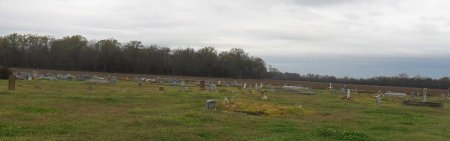 OVERVIEW 1, * - Franklin County, Louisiana | * OVERVIEW 1 - Louisiana Gravestone Photos