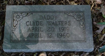 WALTERS, CLYDE, SR - Franklin County, Louisiana | CLYDE, SR WALTERS - Louisiana Gravestone Photos