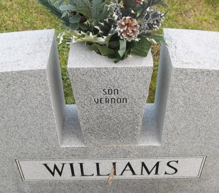 WILLIAMS, JAMES V (BACK) - Franklin County, Louisiana | JAMES V (BACK) WILLIAMS - Louisiana Gravestone Photos