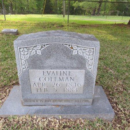 COTTON COLEMAN, EVALINE - Grant County, Louisiana | EVALINE COTTON COLEMAN - Louisiana Gravestone Photos