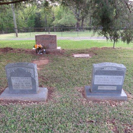 MORRIS COLEMAN, ANNIE - Grant County, Louisiana | ANNIE MORRIS COLEMAN - Louisiana Gravestone Photos