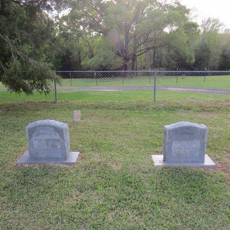 COLEMAN, JESSIE - Grant County, Louisiana | JESSIE COLEMAN - Louisiana Gravestone Photos