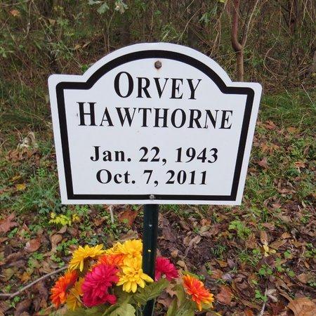 HAWTHORNE, ORVEY - Grant County, Louisiana   ORVEY HAWTHORNE - Louisiana Gravestone Photos