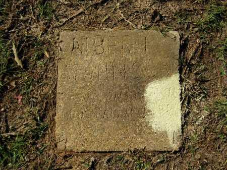 JOHNSON, ALBERT - Grant County, Louisiana | ALBERT JOHNSON - Louisiana Gravestone Photos