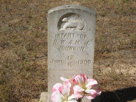JOHNSON, INFANT - Grant County, Louisiana | INFANT JOHNSON - Louisiana Gravestone Photos
