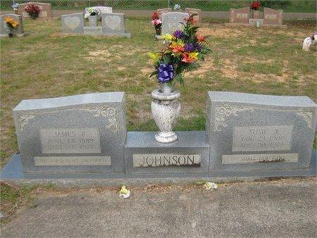 JOHNSON, JAMES R - Grant County, Louisiana | JAMES R JOHNSON - Louisiana Gravestone Photos