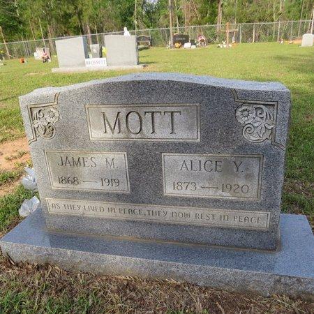 YOUNG MOTT, ALICE  MALISSA - Grant County, Louisiana | ALICE  MALISSA YOUNG MOTT - Louisiana Gravestone Photos