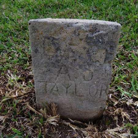 TAYLOR, INFANT - Grant County, Louisiana | INFANT TAYLOR - Louisiana Gravestone Photos