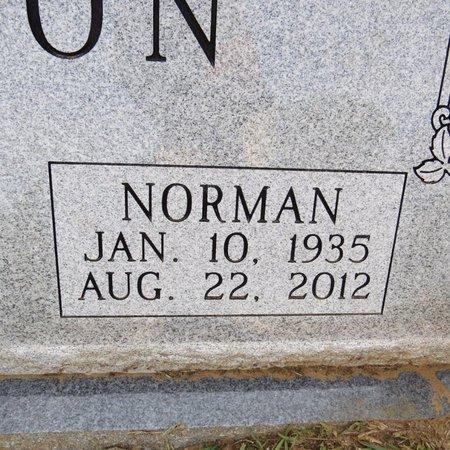 TISON, NORMAN E (CLOSE UP) - Grant County, Louisiana | NORMAN E (CLOSE UP) TISON - Louisiana Gravestone Photos
