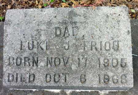 FRIOU, LUKE J - Iberia County, Louisiana | LUKE J FRIOU - Louisiana Gravestone Photos