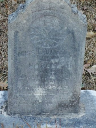 NORRED, EMILY VICTORIA, MISS - Jackson County, Louisiana | EMILY VICTORIA, MISS NORRED - Louisiana Gravestone Photos