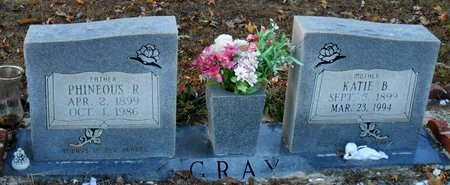 GRAY, PHINEOUS RAWLING - La Salle County, Louisiana | PHINEOUS RAWLING GRAY - Louisiana Gravestone Photos